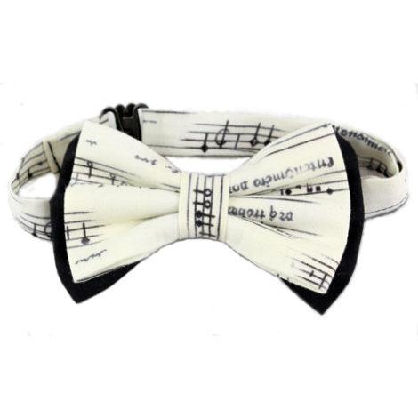 papion note muzicale